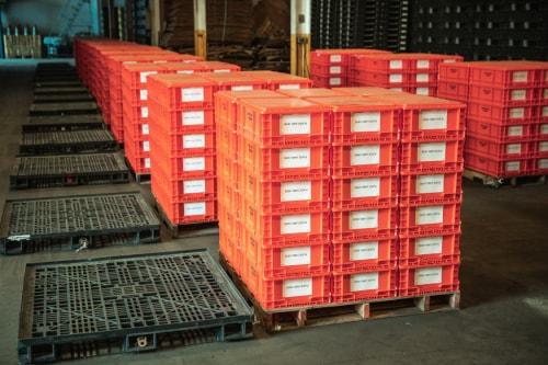 Bulk Plastic Containers