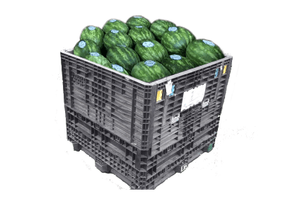 watermelons container